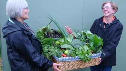 Community garden produce