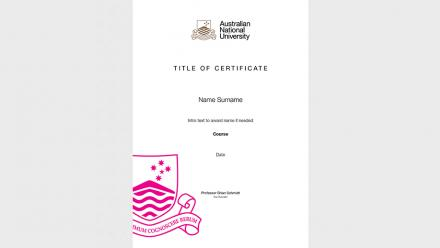 Vice-Chancellor's certificate