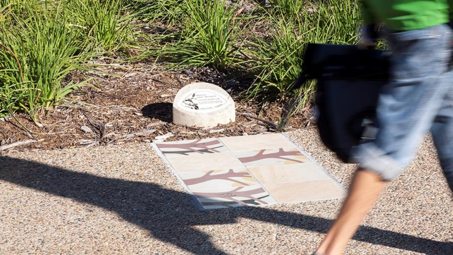 Tree plaques and handpainted tiles show the path of the Lindsay Pryor Walk. (Stuart Hay)