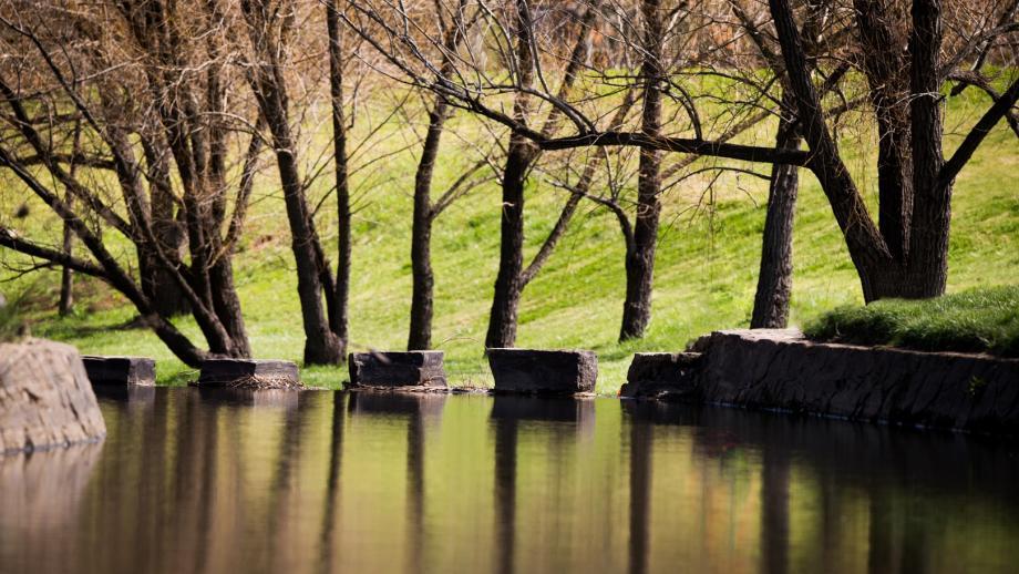 Stepping stones on Sullivans Creek. (Stuart Hay)