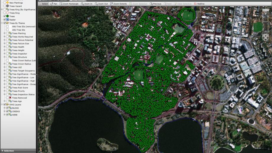 Screenshot of Tree database