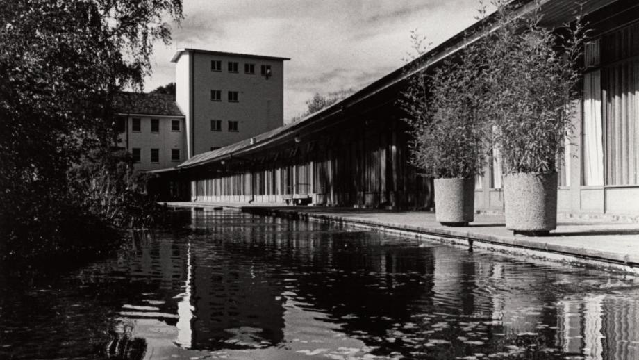 University House Pond, 1986 (Sources: ANU Archives)
