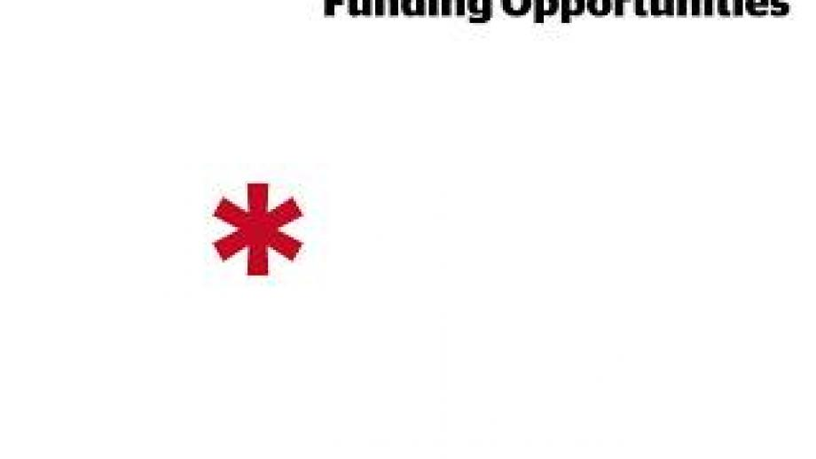 *Research Professional: Interacting with Funding Opportunities