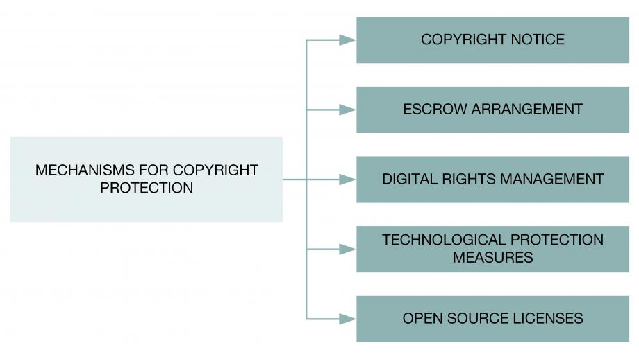 Mechanisms for copyright protection, for example in computer software