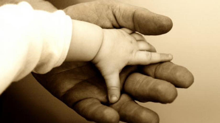baby's hand in adult's