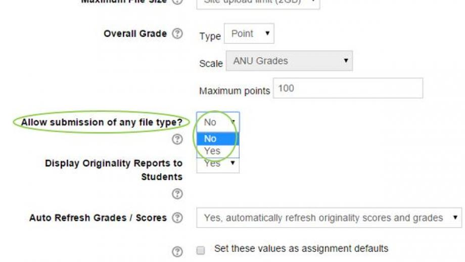 Turnitin Allow submission of any file type