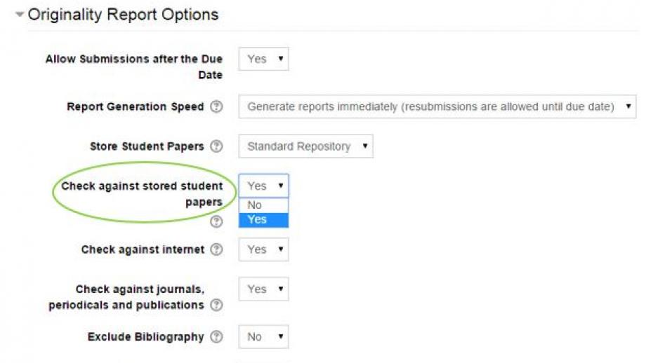 Turnitin Check against stored student papers