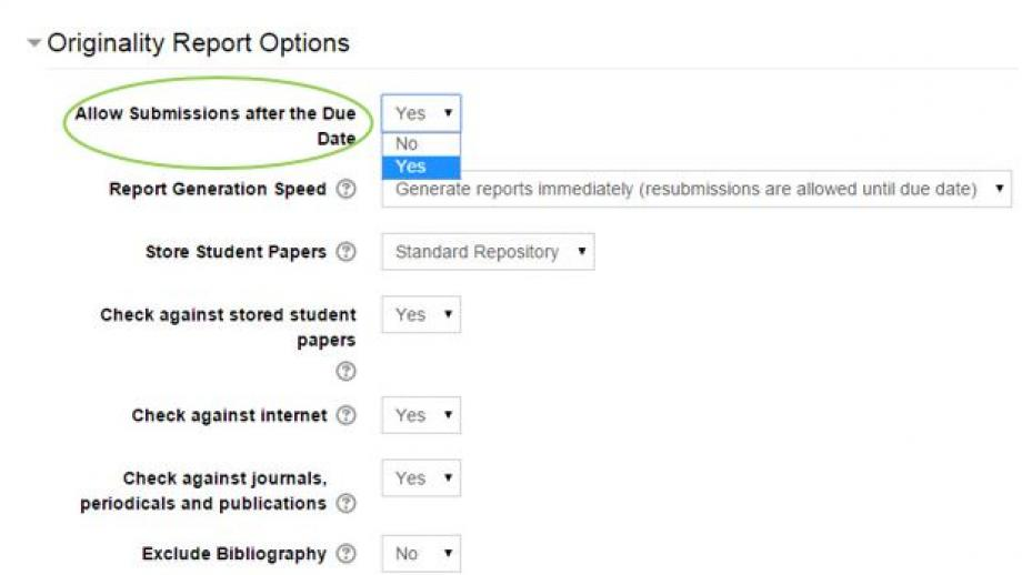 Turnitin Originality Report Options Allow Late submissions