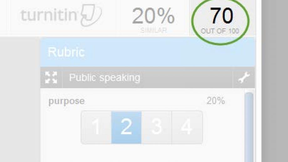 Turnitin. Update the score