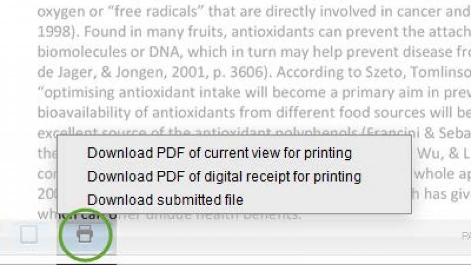 Turnitin Printer button