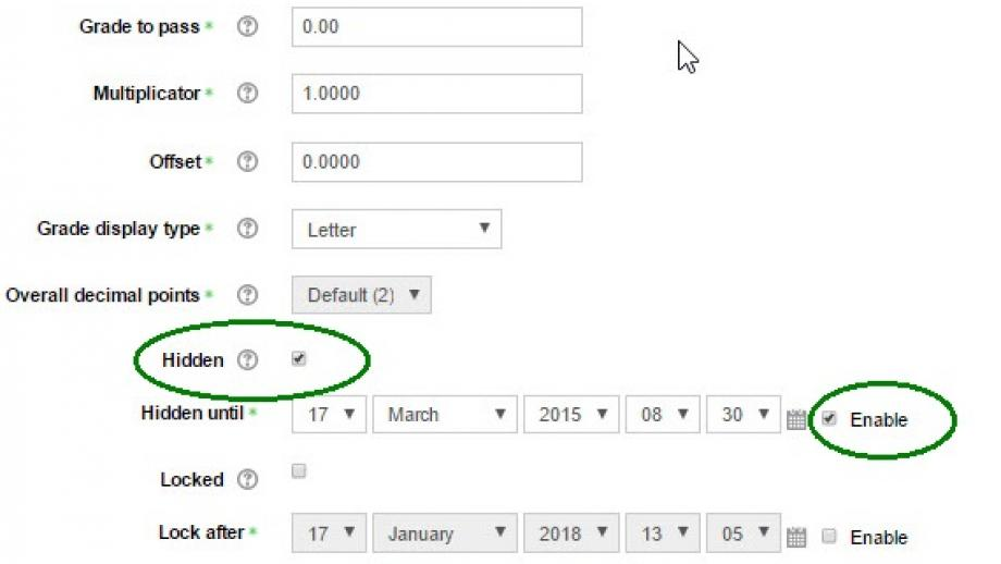 """expanded options in edit gradebook item, showing tick box for """"hidden"""" and date settings"""