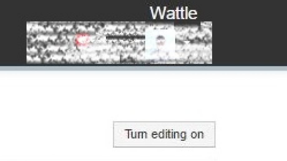Turn edit on button